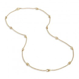 Lucia Long Link Necklace